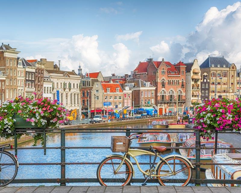 5 Interesting Facts: Dutch Language and Translation